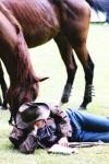 s koněm 2001